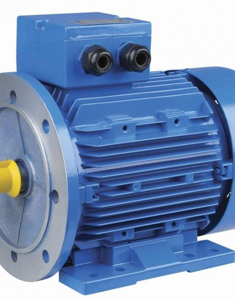 MS-Three-Phase-Aluminum-Housing-Electrical-Motor